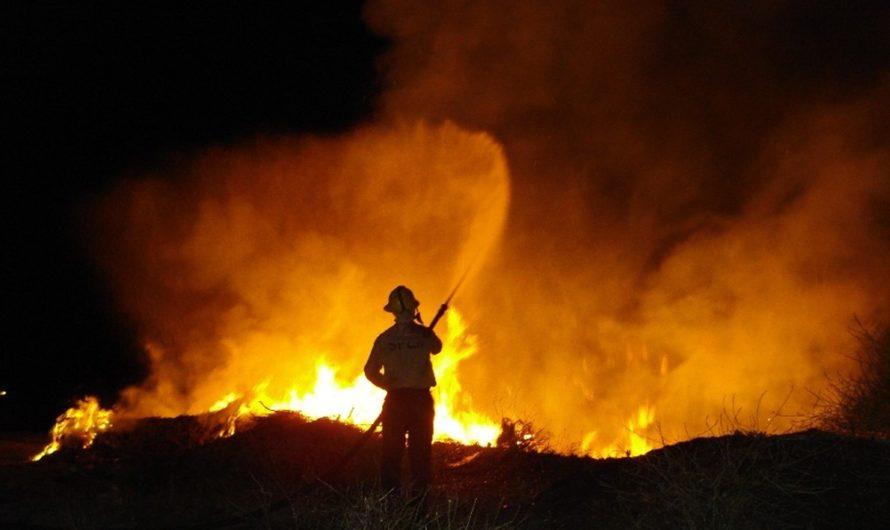 Intensa tarea de los Bomberos para combatir el incendio de Guardia Mitre