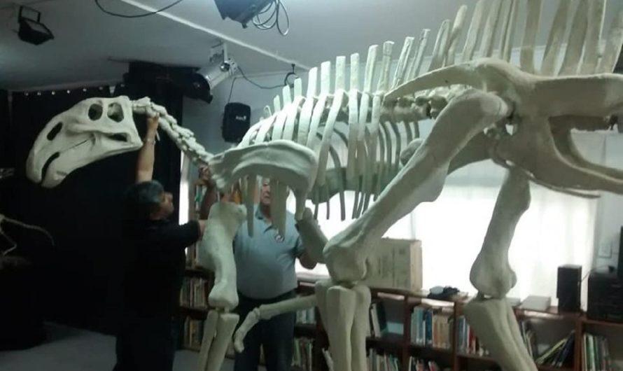 «Dinosaurios y otras bestias prehistóricas» llega a Las Grutas